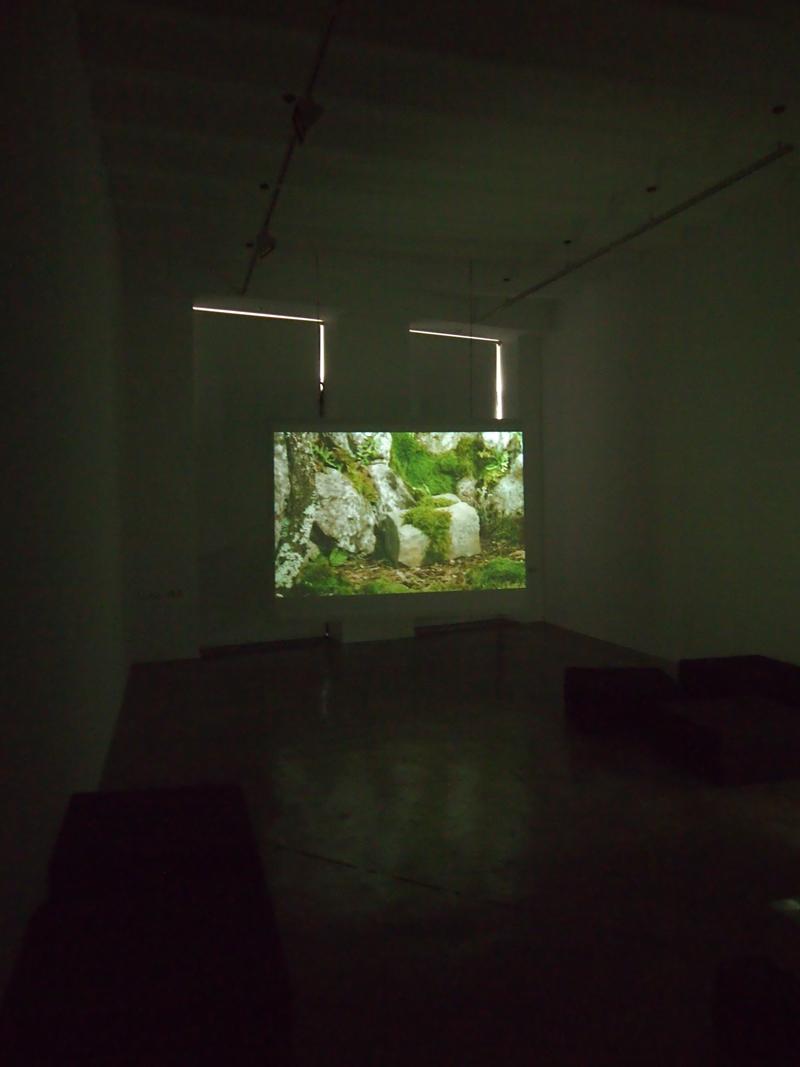 Instalación/Proyecciones Galería Rosa Santos