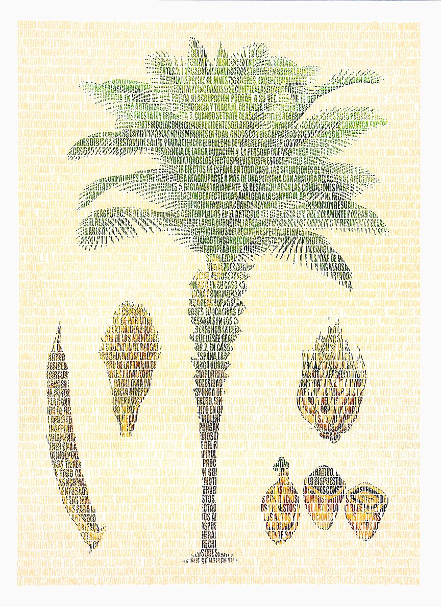 Angela Arecaceae. Lápices de colores sobre papel. 87x67cm.