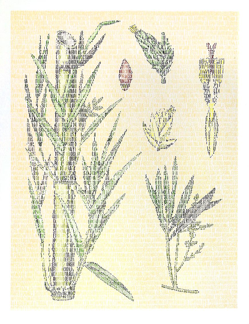 Supi Bambusoideae. Lápices de colores sobre papel. 87x67cm.