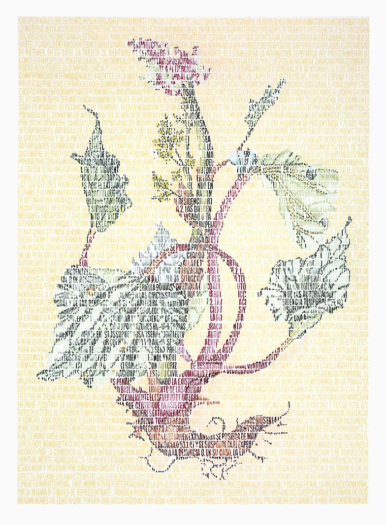 Lili Polygonaceae. Lápices de colores sobre papel. 87x67cm.