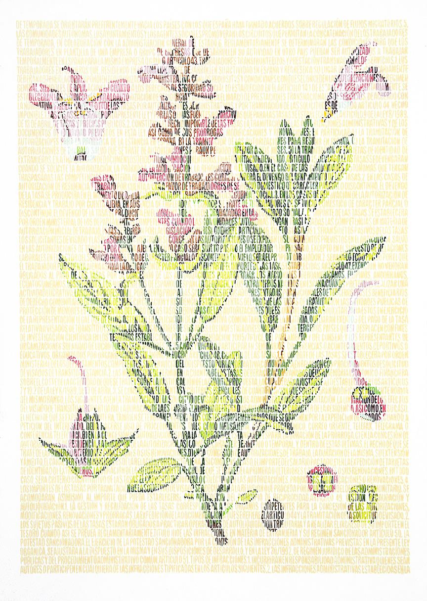 Federico Lamiaceae. Lápices de colores sobre papel. 87x67cm.