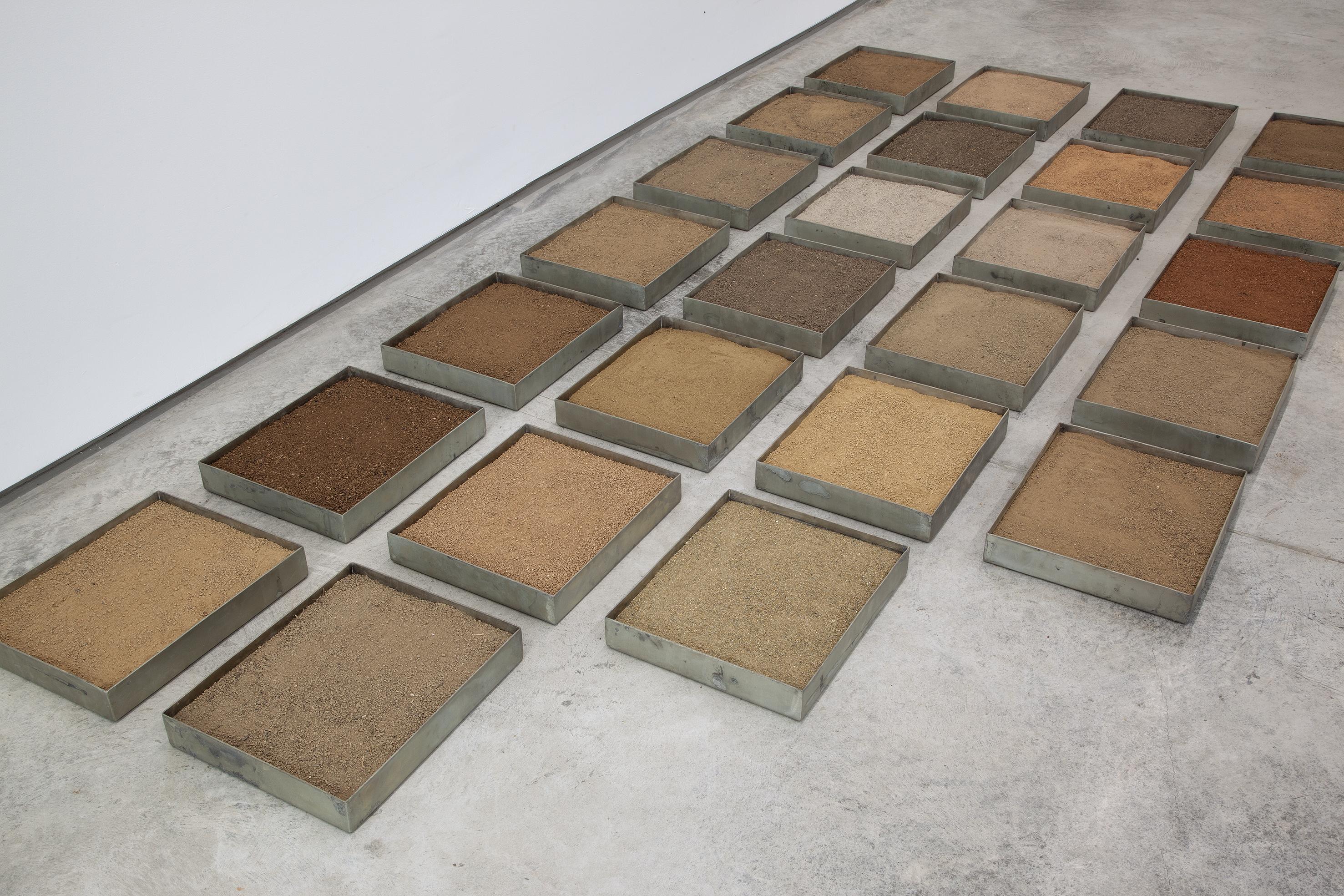 Veinticinco cajas de tierra colectivizada, 2019